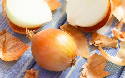 Ingrediente naturale multifuncționale pe bază de flavonoide din coajă de ceapă și bacterii lactice co-microîncapsulate