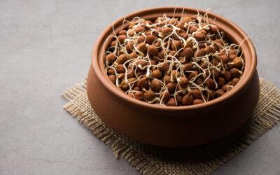 Procedeu de obținere a unui produs fermentat din leguminoase germinate și produsul astfel obținut