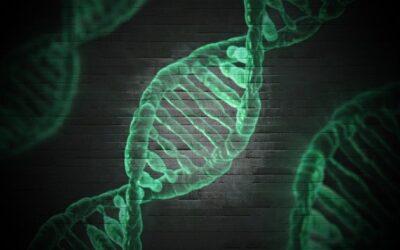 Rolul interacțiunior genă-genă în definirea aporturilor zilnice de nutrienți