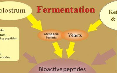 Produse multifunctionale obtinute din colostru fermentat cu kefir